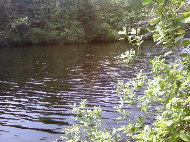 Shunock River, North Stonington, CT