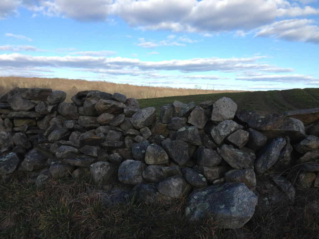 Stone walls of North Stonington