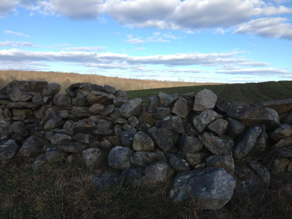 Stone walls of North Stonington